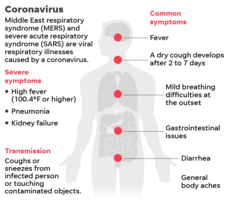 ISBE Issues K-12 Guidance on the New Corona Virus